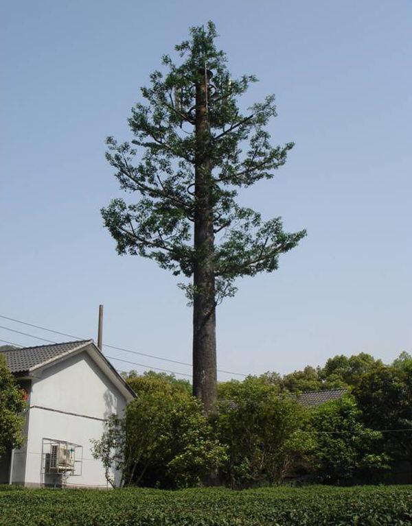 仿生塔种类:   仿生塔包含:松树,阔叶树,毛竹,芭蕉树,棕榈树,榕树